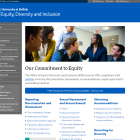 Equity, Diversity and Inclusion website.